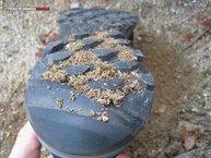 Adidas Kanadia TR 7: Algo de barro se acumula