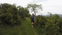 Adidas Terrex Two Boa: Una zapatilla para correr bien en una gran multitud de terrenos