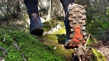 Altra Lone Peak 4.0: Altra Lone Peak 4.0