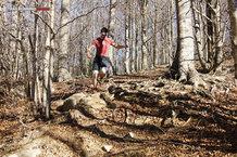 Altra The Superior 1.5: Corriendo por el Montseny