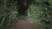 Black Diamond Spot325: El Black Diamond Spot325 nos permite correr bien por senderos