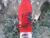 Brooks Cascadia 10: