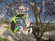 Cébé S'track: Primera salida de primavera