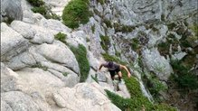 Dynafit Alpine Pro: