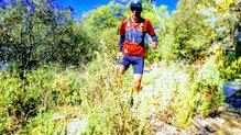 Dynafit Alpine Running Vest: