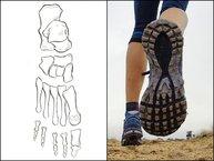 Merrell Agility Peak Flex: Merrell Agility Peak Flex: suela inspirada en los huesos del pie