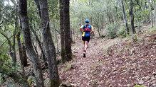 Salming Trail Hydro: En subida la tracción de las Salming Trail Hydro ha sido excelente