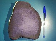 Salomon Bonatti WP Jacket W: Salomon Bonatti WP: comparativa de tamaño en el que queda plegada