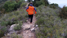 Salomon Bonatti WP Pant: Los Salomon Bonatti WP Pant son unos grandes compañeros para correr por la montaña