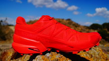 Frontal de Calzado: Salomon - SpeedCross 5