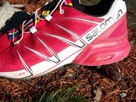 Salomon Speedcross Pro W: El diseño agresivo de las Salomon Speedcross Pro W ya invita a correr.