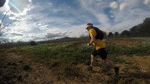 Saucony Peregrine 8: zapatillas para correr desde maraton hasta ultra distancia