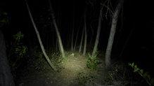 Silva Cross Trail 3: El Silva Cross Trail 3 iluminando con su máxima potencia
