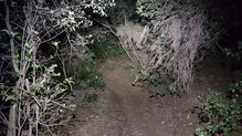 Silva Cross Trail 5: Silva_CrossTrail5_Perfecto para tramos técnicos