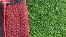 X-Bionic Effektor Power Pants: X-Bionic Effektor Power Pants  maleza punzante, mala compañía
